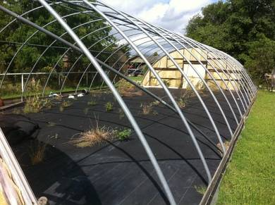 The greenhouse frame before moving.